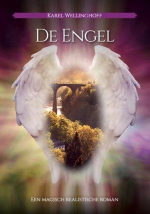 De Engel - 9789493071339